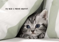 Таня Проценко, 20 сентября , Одесса, id46091556